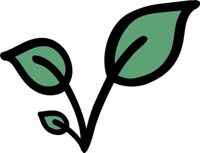 illustrated leaf green